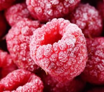 Fruit-Vegetable-Storing